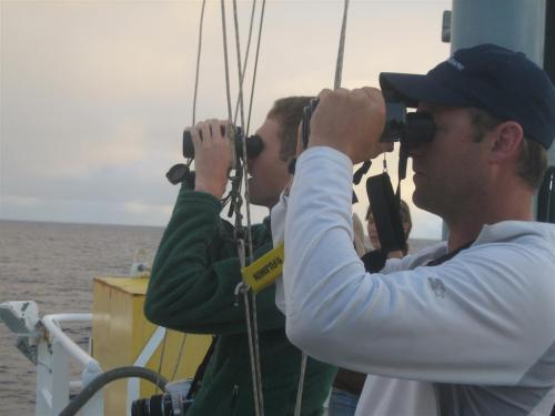 Observing (large)